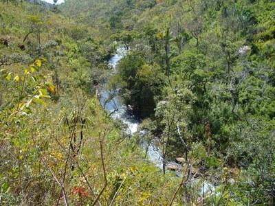 """""""Der Cerrado ist eine Umwelt, die im Aussterben betroffen ist"""""""
