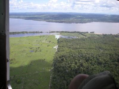Amazonas-Entwaldung auf Zehn-Jahres-Hoch für den Monat Oktober