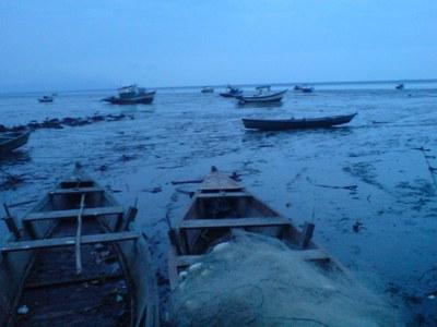Brasiliens Kleinfischer protestieren gegen massive Kürzungen bei Sozialleistungen