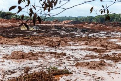 Dammbrüche und Sirenengeheul: Landgrabbing durch Terror nach den Desastern von Mariana und Brumadinho
