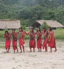 Hilferuf aus Amazonien: Goldsucher töten und bedrohen Wajãpi