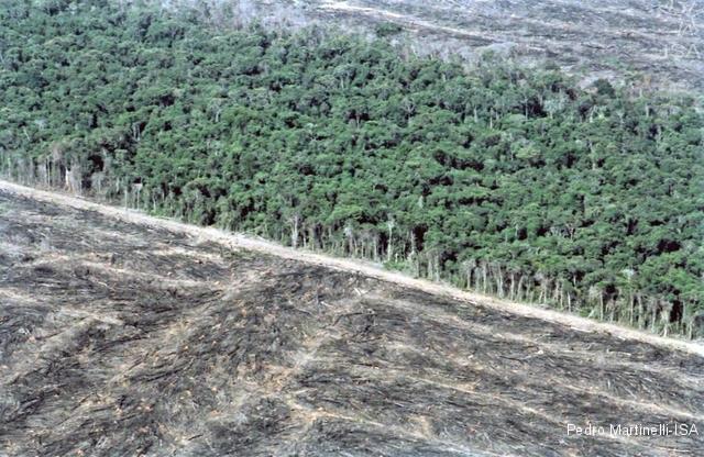 Historischer Rückschritt im Umweltbereich