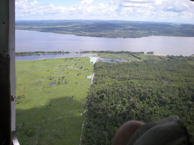 INPE stellt neue Höchststände bei Entwaldung Amazoniens fest
