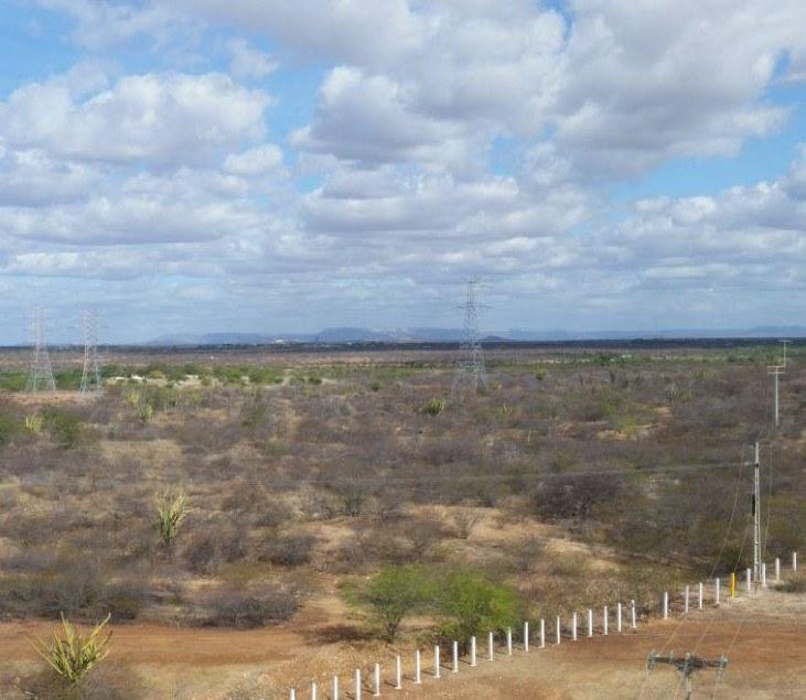 [Podcast] Wüste oder Lebensraum? Der semiaride Nordosten