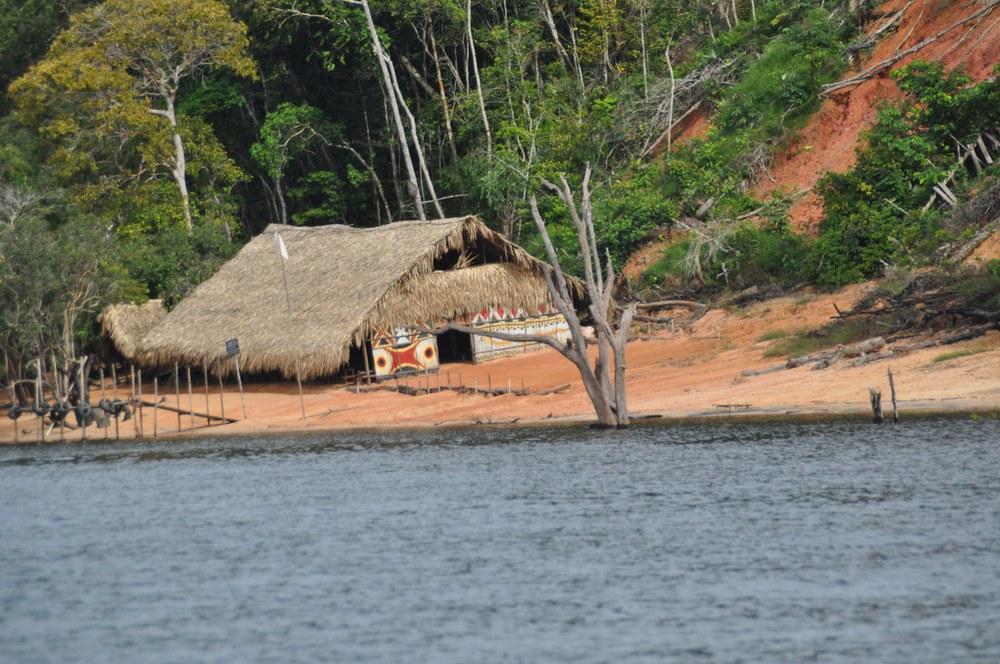 Rettungsplan für Amazonien kann nur integral gelingen