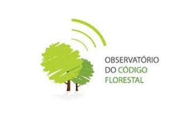 Umweltorganisationen beobachten Veränderungen durch Código Florestal
