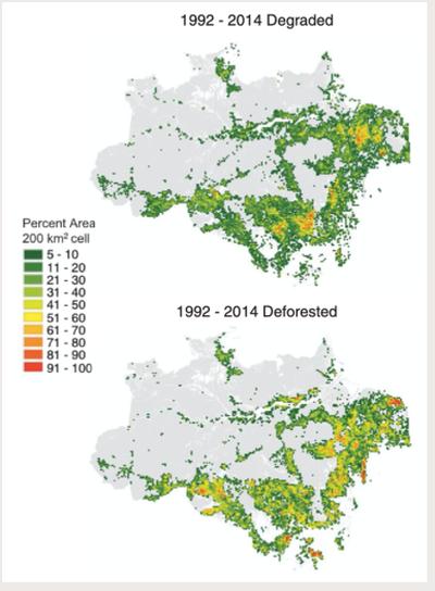 Neue Studie: Degradierte Flächen Amazoniens bisher übersehener Faktor. Kipppunkt wohl schon überschritten