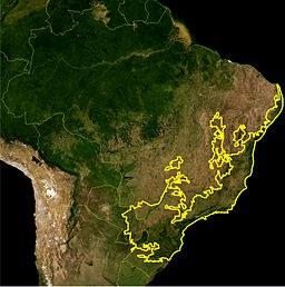 Warum die Ursachen der Wasserkrise in Brasilien ignoriert werden
